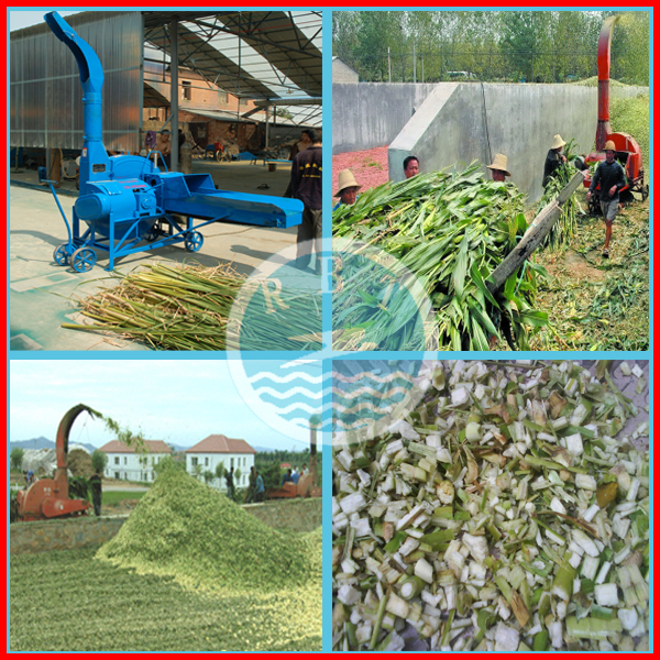 2016 New arrival Straw Crusher/Hay Cutter/Chaff Cutter For Animale Feed
