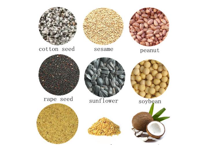 15-16ton de alta capacidad de soja/semillas de colza/canola/cottonseeds/maní/semillas de girasol de aceite de soja prensa de extracción máquina
