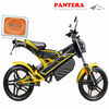 PT-E001 2014 EEC Aluminum Body Lithium Baterry Low Price Two Wheel Electric Scooter