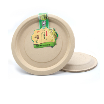 In party Biodegradable Christmas disposable Plate eco friendly bamboo