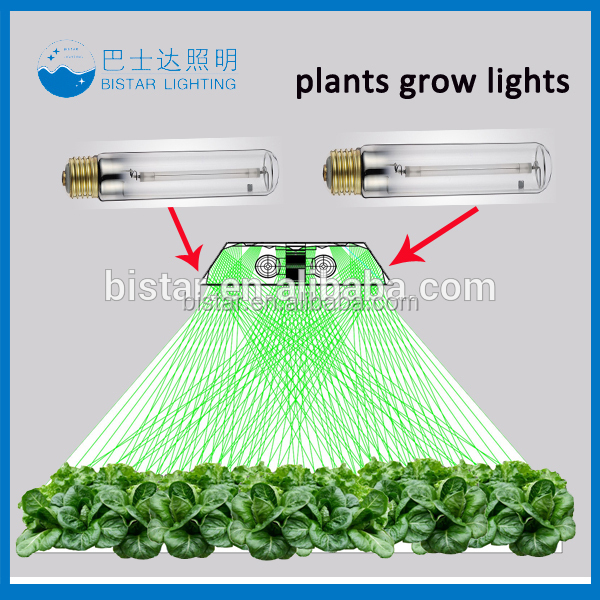 manufacturer of Growing lamp 600w hps bulb hydroponic systems lighting bulbs