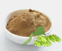 Sedative effect Hops Flower Extract powder