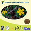 Hot Sale 100% Natural 1%-5% Tannic Acid Damiana Extract
