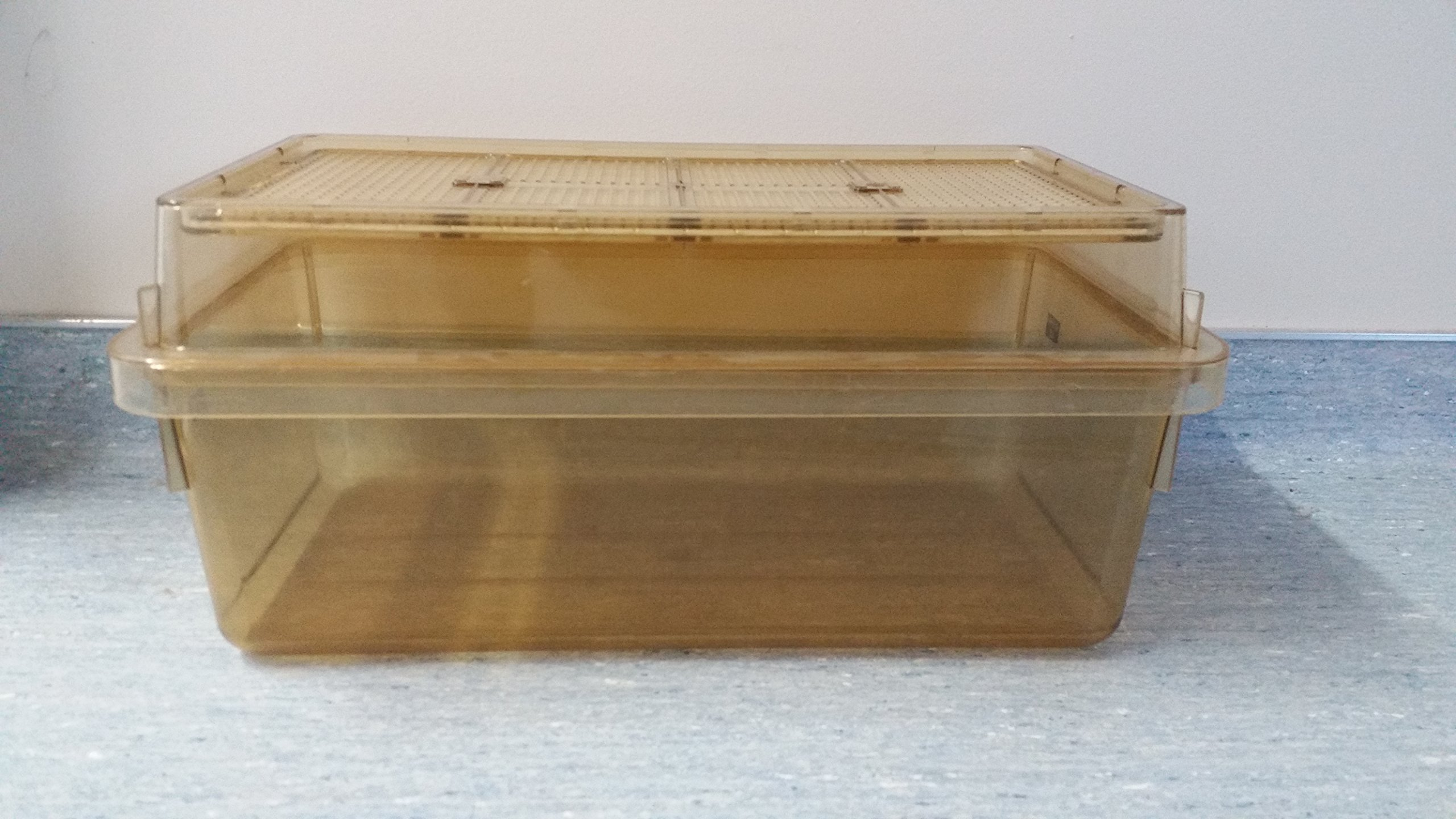 Buy Allentown Static Rodent Cage Complete WIth Wire Bar Lid
