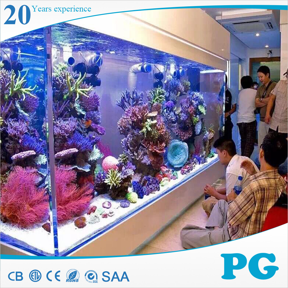 PG Made In Shanghai Customize Acrylic Cylinder Aquarium Tanks