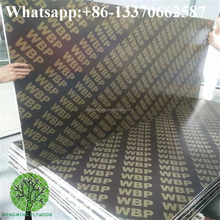 pop cheap pvc film faced plywood/best price plywood for construction use