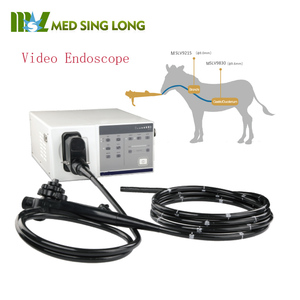 Big animal use 2.8mm video endoscope for horse/ flexible veterinary endoscope price