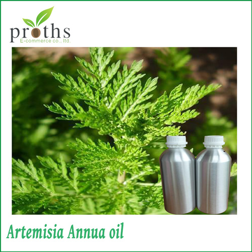 Factory supply low price sweet wormwood oil
