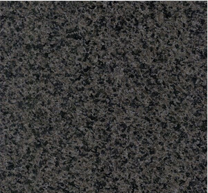 China Black Pearl Granite Tile Big Slab