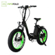 Fashion 2018 Israel 500W Fat Tire Electric Bike Folding Bicycle
