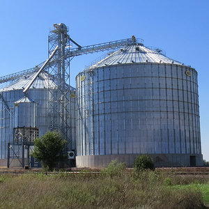 500ton Wheat Paddy Grain Storage Bolted Steel Silo Prices for Sale