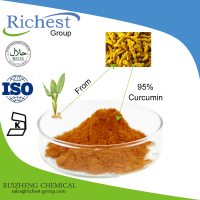 Water Soluble Turmeric Root Extract Powder 95% Curcumin