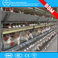 Top quality layer and broiler feeding project poultry farm automatic chicken layer cage