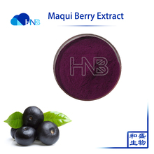 Antioxidant King Maqui Berry Extract Powder dried Maqui Berry powder