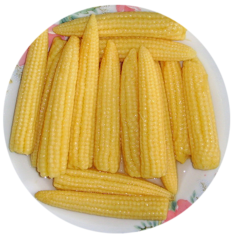 High Quality Canned Cut Baby Corn Cooked Style in Brine Canned Vegetable