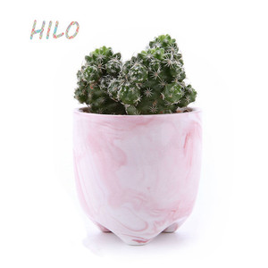 Ice Cream Serial Succulent Cactus Ceramic Plant Pots