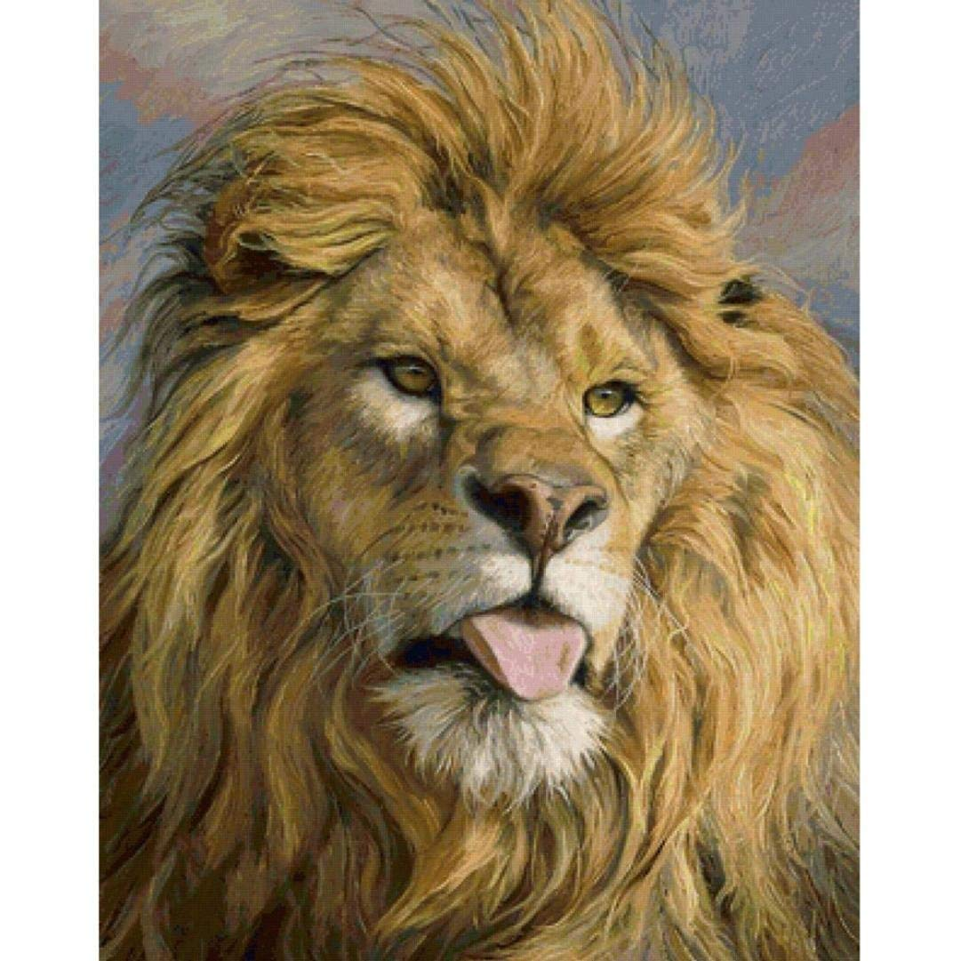 Lion Full Drill 25x30cm, Franterd 5D DIY Diamond Painting Kits By Number - Counted Cross Stitch Rhinestone Embroidery Home Arts Craft Decor