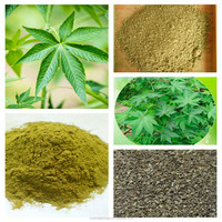 Small order welcome Bulking price natural plant extract sweet tea extract