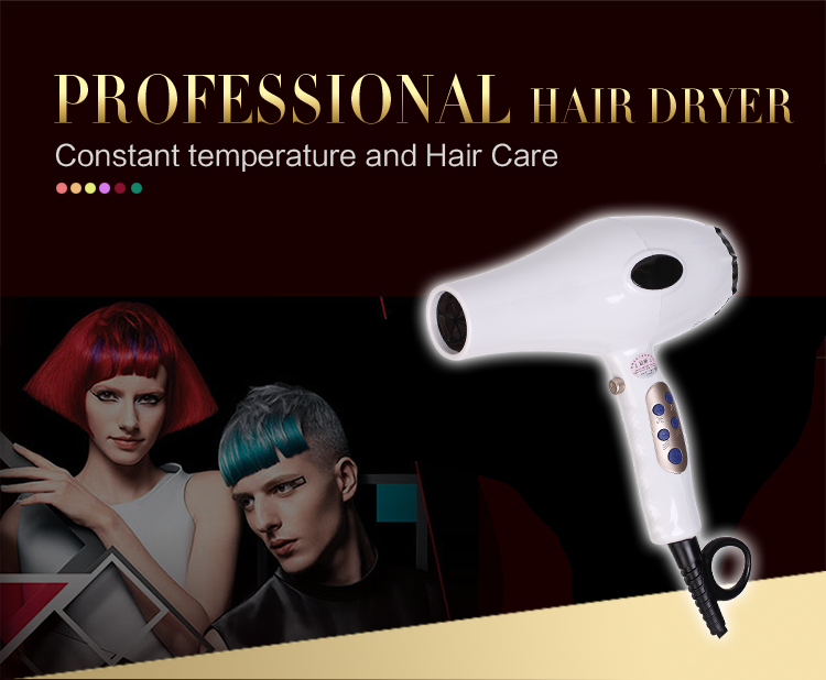 hair products 2017 portable korea equator private label best professional salon hair dryer hotel