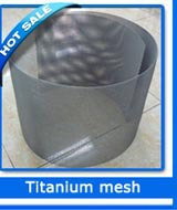 platinum coated titanium mesh electrode screen