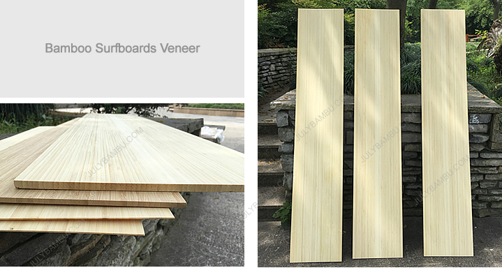 Surfboards Veneer