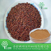 Natural Wild jujube extract triterpene saponins 95% From Wild jujube P.E. Gmp Manufacturer