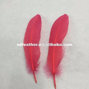 beautiful color dyed natural goose feather down price