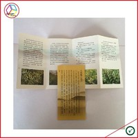 High Quality Brochure Printing Services