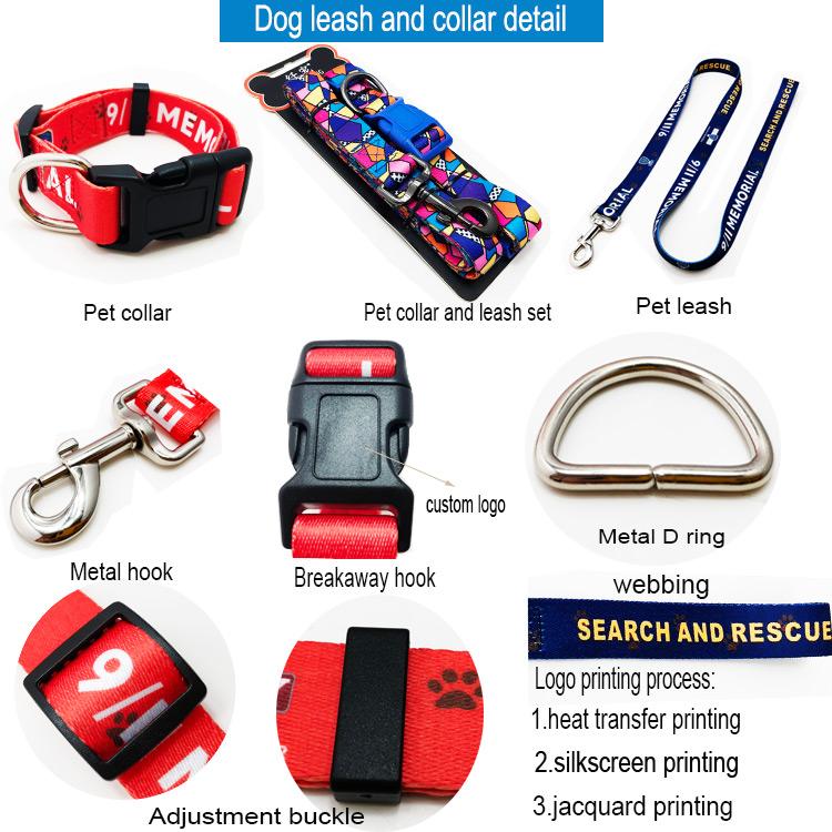 dog leash collar detail