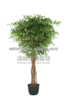 silk,fabric,plastic,resin fake trees and plant,artificial money tree Artificial Silk Trees