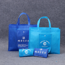Promotional Cheap Custom Logo Print Large Non Woven Eco Friendly Reusable Shopping Bags Foldable