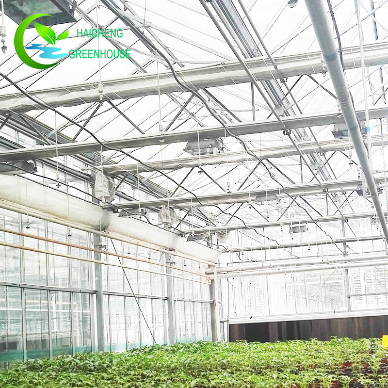 Best Commercial Greenhouse, Best Commercial Greenhouse Suppliers and ...