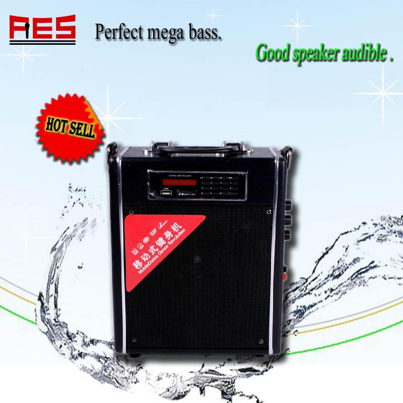 Wireless Mp3 Active Speaker 12v Musical Instruments Wireless ...