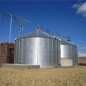 Professional Design Products 5000 Ton Flour Steel Grain Silo