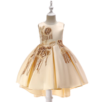 Boutique Cinderella Champagne Off-Shoulder Baby Girl Party Dress for Birthday Party Summer In Stock T5035