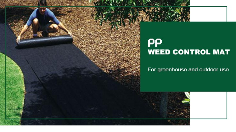 pp woven geotextile fabric ground coverweed barrier used in agriculture - Weed Barrier