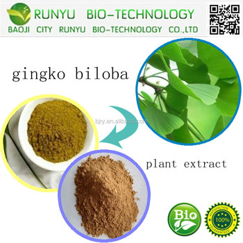 Supply Of Pure Natural Ginkgo Biloba Extract; Ginkgo Biloba Leaf Extract; Ginkgo Biloba Extract Powder by HPLC CAS: 90045-36-6