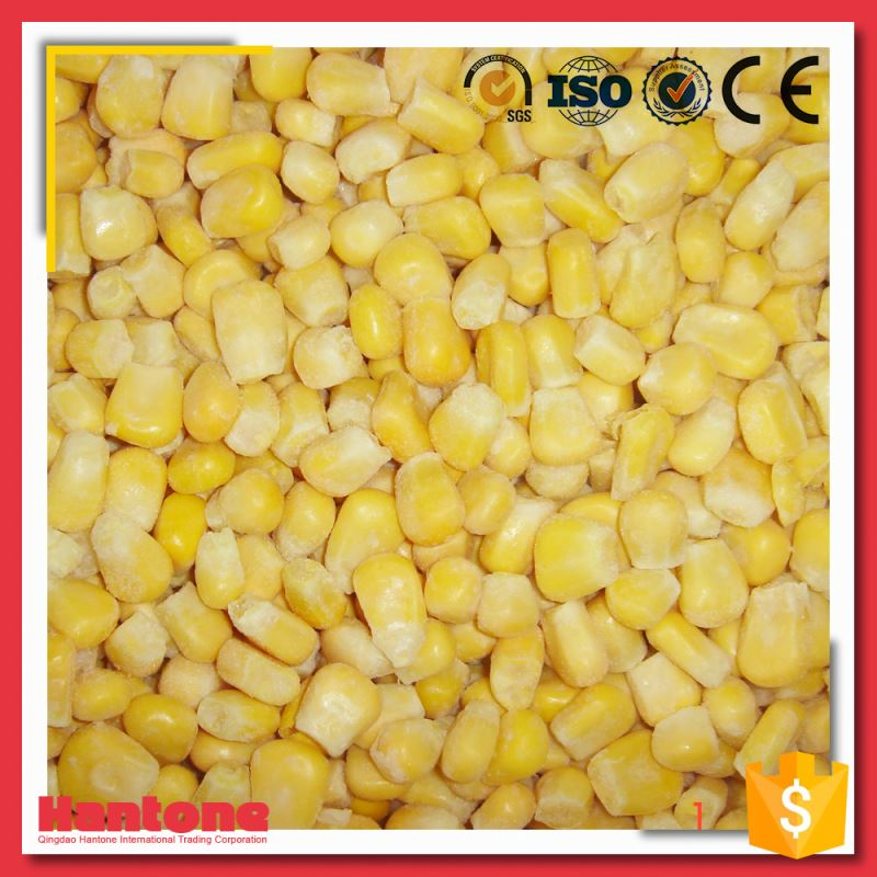 China Best Price Import Tasting Frozen Sweet Corn