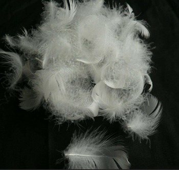 Cheap White Goose Feather For Sale