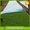 Quanzhou biodegradable pp nonwoven fabric /pp nonwovenfabric for plant protect coldproof farming/ground cover for agriculture