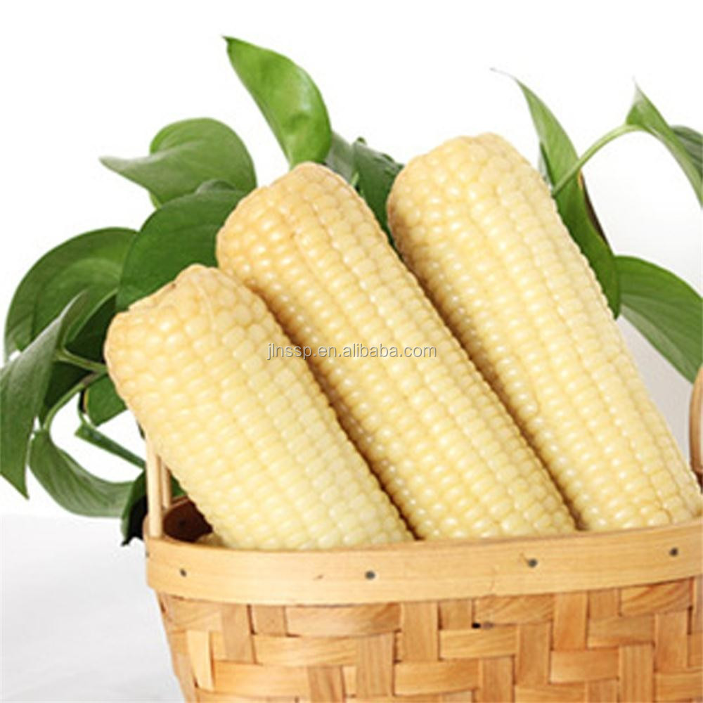 Non-GMO fresh white <strong>corn</strong> in vacuum packaging