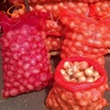 Fruit / Vegetable / Potato Bag / PP / PE Mesh Bag / Raschel / Leno for Packing onions potatoes