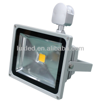 Economics factory price brightness IP65 Flood lighting Led lamp
