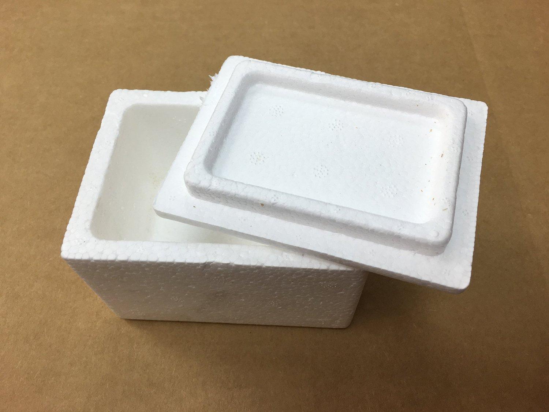 28QT Foam Ice Chest Lifoam Leisure Products