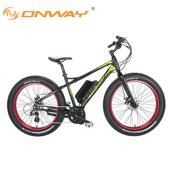 2017 Onway Alloy Frame Two Wheel Drive Electric Fat Bike Buy