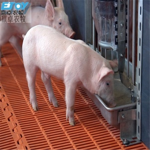 Professional Design For Pig House
