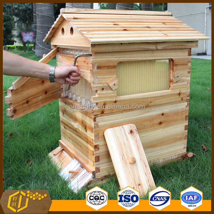 Hot Sale from China Honey Auto Flow Bee Hive