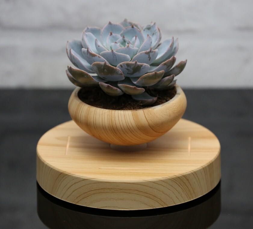 nouvelle conception int rieur l vitation mini plante en pot pots fleurs jardini res id de. Black Bedroom Furniture Sets. Home Design Ideas