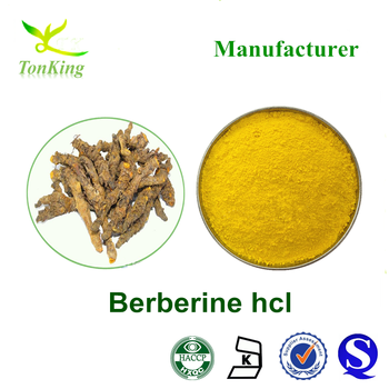 Golden Thread extract powder berberine 98% berberine hcl