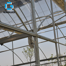 Hot Galavnized Commercial Hydroponics Film Greenhouse